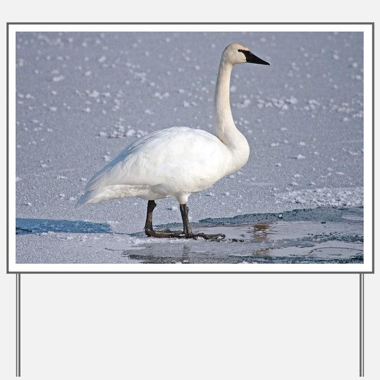 Cute Swans Yard Sign