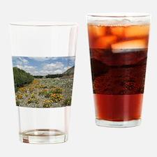 Valle Aconcagua Drinking Glass