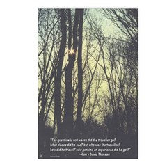 Trees Postcards (Package of 8)