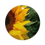 Edge Of A Sunflower Ornament (Round)