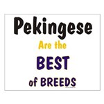 Pekingese Dog Best Of Breeds Small Poster