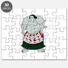 SUMO Puzzle