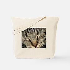 Tabby Kitty Tote Bag