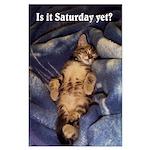 Sleeping Kitten Large Poster