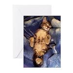 Sleeping Kitten Greeting Cards (Pk of 10)