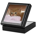 Ginger Kitten Keepsake Keepsake Box