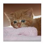 Ginger Kitten Tile Coaster