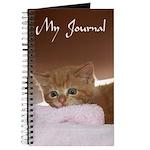Ginger Kitten Journal