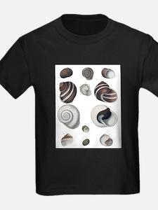 kids tshirt.jpg T-Shirt