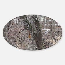 Funny Draven Sticker (Oval)