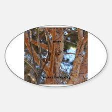 Cute Draven Sticker (Oval)