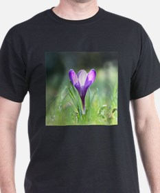 Purple Crocus in spring T-Shirt