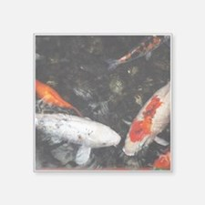 White and Orange Koi Sticker