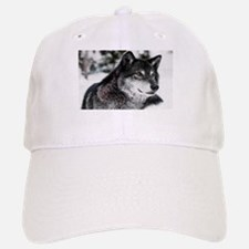 Black Wolf Baseball Cap