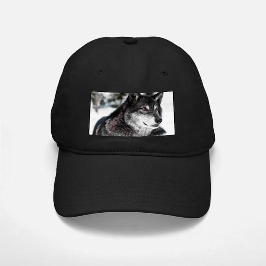 Black Wolf Baseball Hat