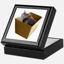 Cat in Box Keepsake Box