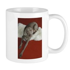 Beautiful AKC Champion Weimaraner photo Mug