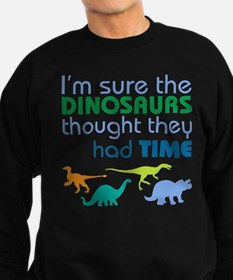Dinosaurs had time Jumper Sweater