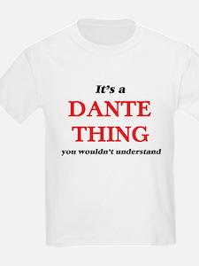 It's a Dante thing, you wouldn't u T-Shirt