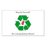 Kidney 10 Pack
