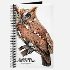 Eastern Screech Owl Journal