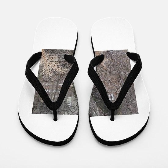 you know Flip Flops
