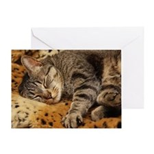 Sleeping Bud Greeting Card