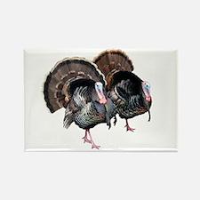 Wild Turkey Pair Rectangle Magnet (100 pack)