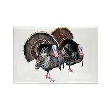 Wild Turkey Pair Rectangle Magnet