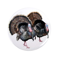 "Wild Turkey Pair 3.5"" Button"