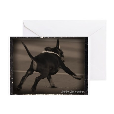 Puppy Zoom Greeting Cards (Pk of 20)