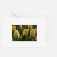 Yellow tulips  Greeting Cards (Pk of 20)