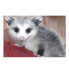 opossum on a log Postcards (Package of 8)