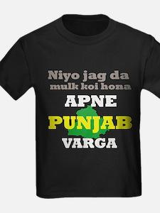 Apne Punjab Varga T