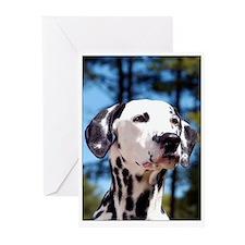 Dalmatian Greeting Cards