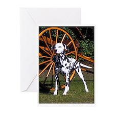 Dalmatian & Cart Greeting Cards