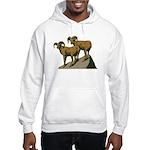 Bighorn Sheep Hooded Sweatshirt