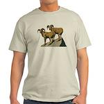 Bighorn Sheep Light T-Shirt