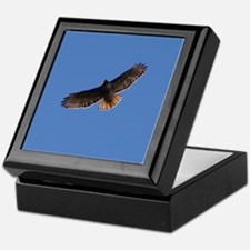 Red-Tailed Hawk Keepsake Box