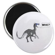 Ornitholestes Magnet