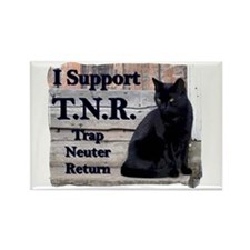 I Support TNR Rectangle Magnet