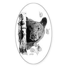 Aspen Bear Oval Decal