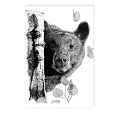 Aspen Bear Postcards (Package of 8)