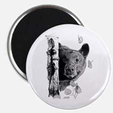 """Aspen Bear 2.25"""" Magnet (100 pack)"""