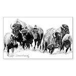 Buffalo Herd Rectangle Sticker