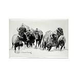 Buffalo Herd Rectangle Magnet (100 pack)