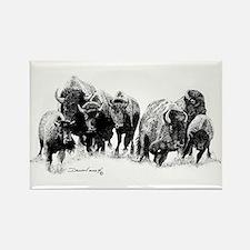 Buffalo Herd Rectangle Magnet