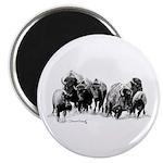 Buffalo Herd Magnet