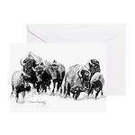 Buffalo Herd Greeting Cards (Pk of 20)