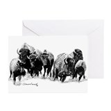 Buffalo Greeting Cards (20 Pack)